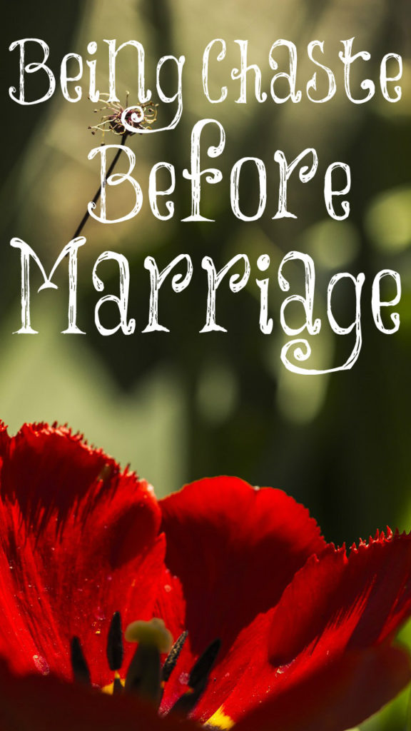 Being Chaste Before Marriage - The Transformed Wife