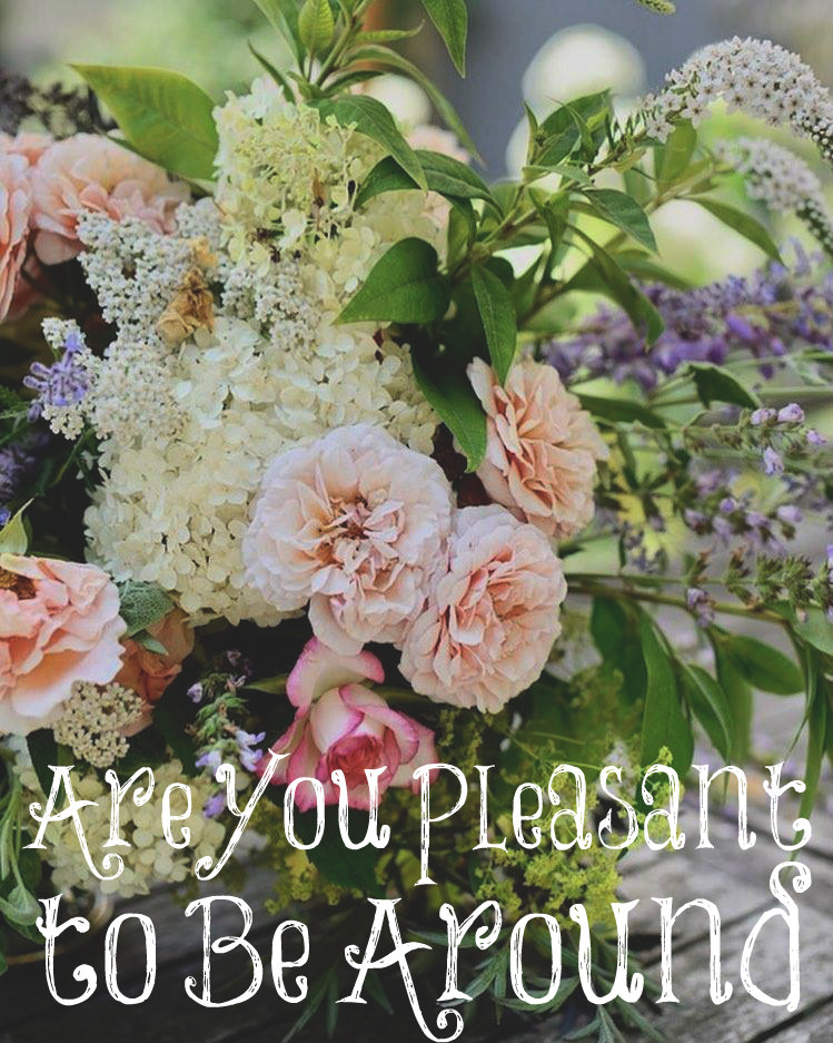 Are You Pleasant to Be Around? – The Transformed Wife